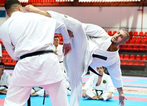 World karate legend preaches union of all countries and predicts major achievements for ITKF | Revista Budô
